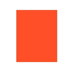 rizwa-logo