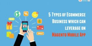 5 Types of Ecommerce Business which can leverage on Magento Mobile App
