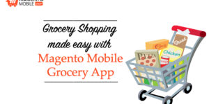 Easy Grocery Shopping with Magento Grocery App