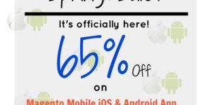 Spring Sale is here! Avail 65% off on Ecommerce Magento App Development