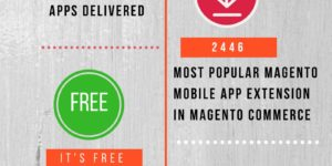Magento Mobile Shop Top 5 Statistics
